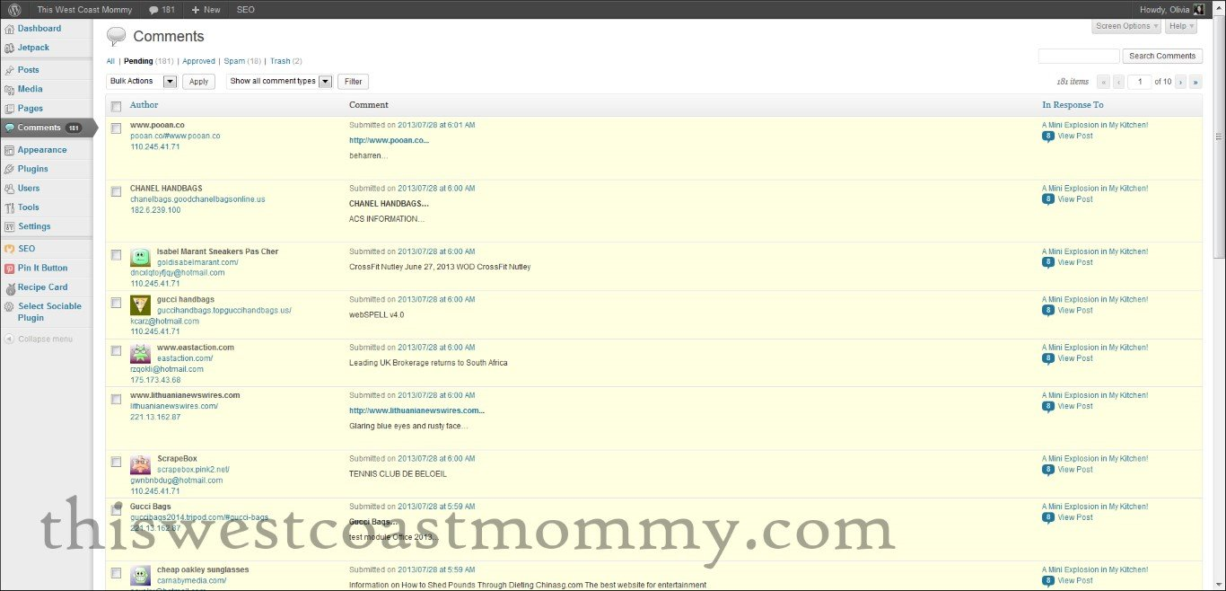 screenshot of spam comments
