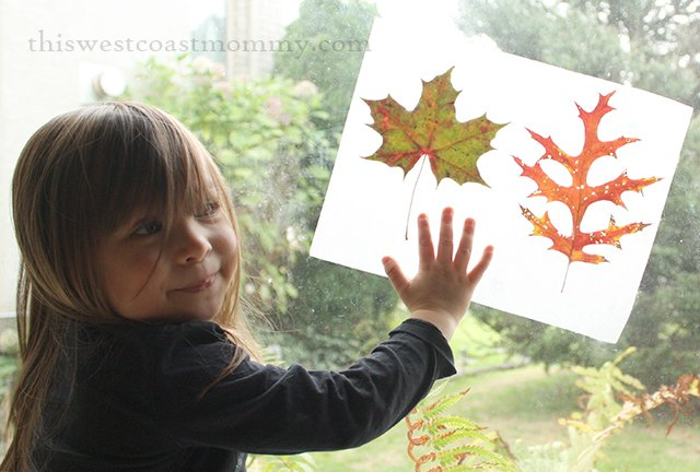 """Kids can save those beautiful fall leaves in this DIY """"book""""."""