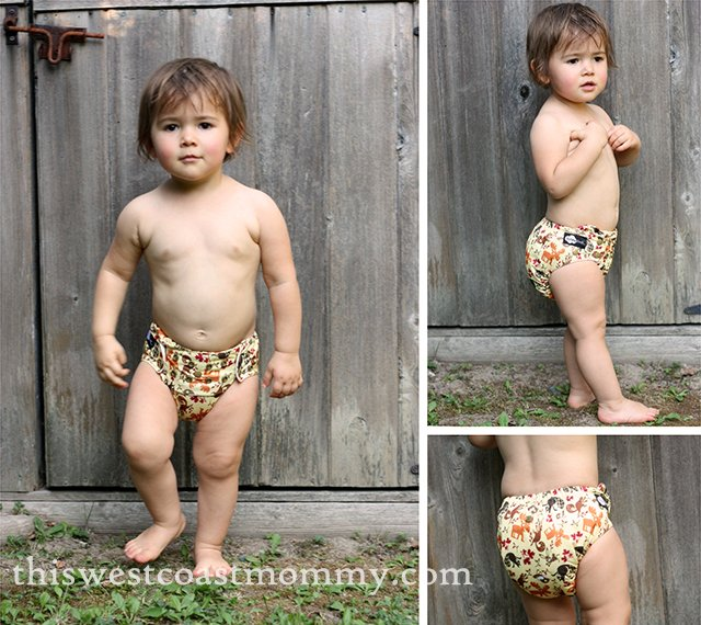 Funky Fluff Stay Dry 2.0 Diaper in Funk-eh Forest review