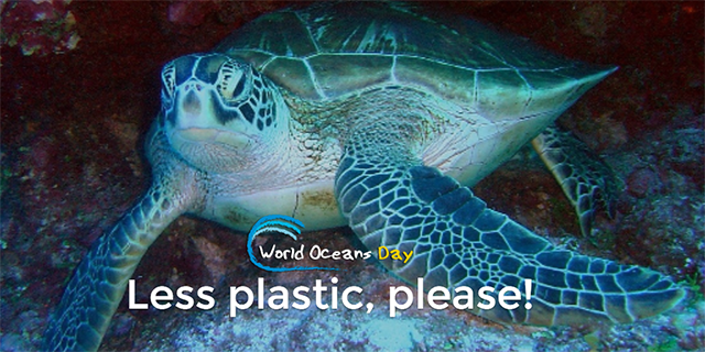 More than 8 million tons of plastic trash end up in the ocean every year, including millions of disposable plastic bags and bottles.