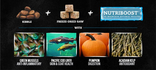 Nutrience Subzero makes raw and grain-free pet food easy! Nutriboost contains green mussels, Pacific cod liver, pumpkin, and Acadian kelp.