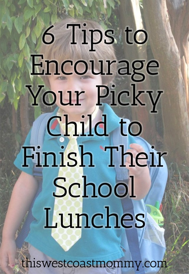 6 Tips for Encouraging Your Picky Child to Finish Their School Lunches